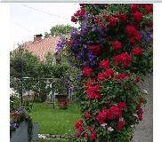c_300_160_16777215_00_images_stories_Bilten39_bilten39.JPG